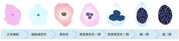 shiiki_image04