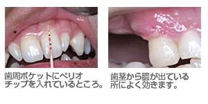 shiiki_image11