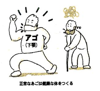 shiiki_image14